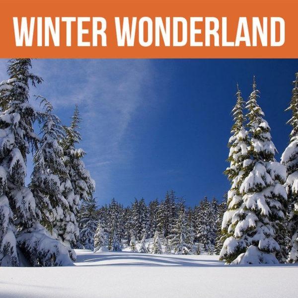 Buy winter wonderland coffee online.